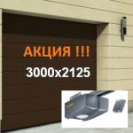 ВОРОТА HORMANN RENOMATIC 3000х2125