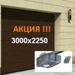 ВОРОТА HORMANN RENOMATIC 3000х2250