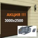 ВОРОТА HORMANN RENOMATIC 3000х2500